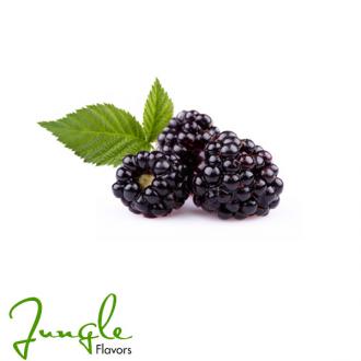 Boysenberry (Jungle Flavor)