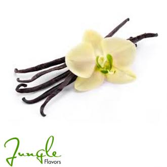 Vanilla (Jungle Flavor)