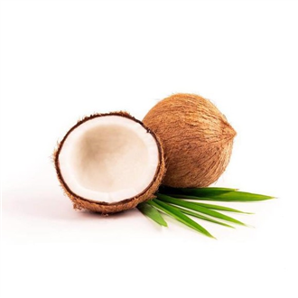 Palm Coconut (Molinberry BULK)