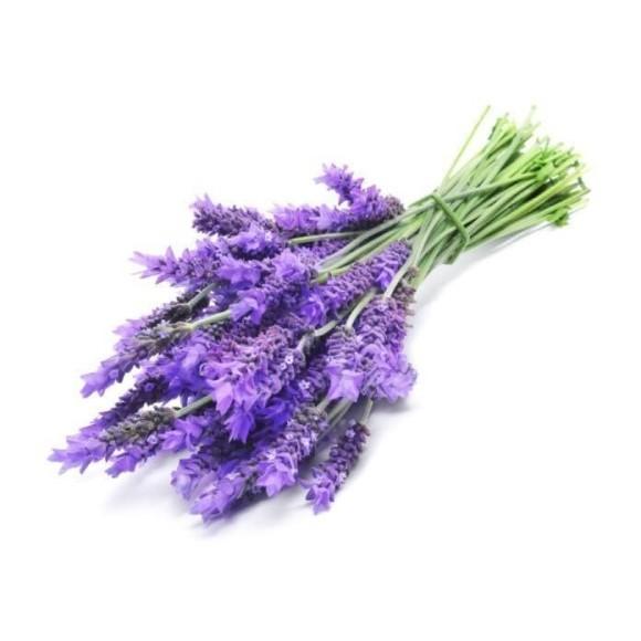 Lavender (FlavourArt BULK)