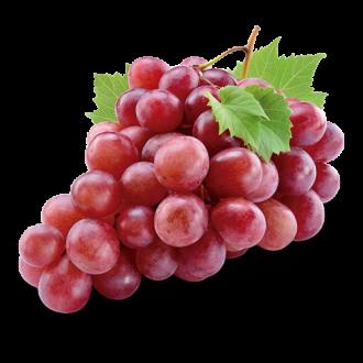 Grape (Flavor Jungle)